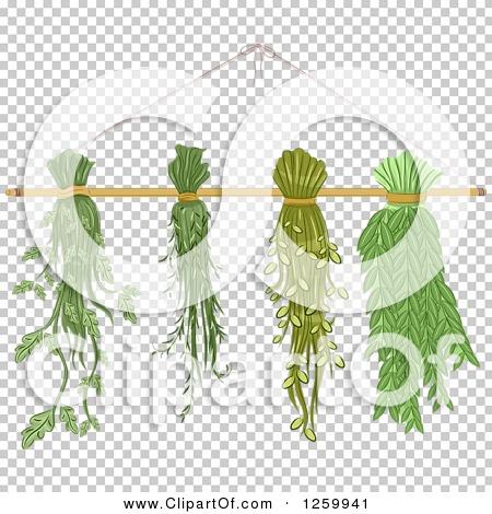 Transparent clip art background preview #COLLC1259941
