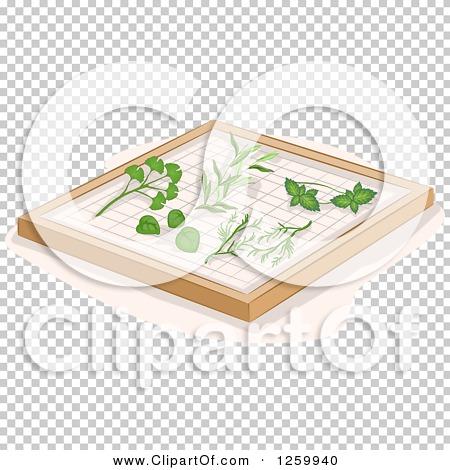Transparent clip art background preview #COLLC1259940