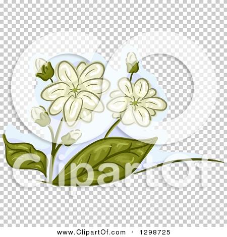 Transparent clip art background preview #COLLC1298725