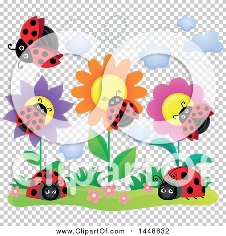 Transparent clip art background preview #COLLC1448832