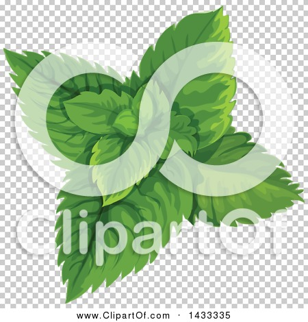 Transparent clip art background preview #COLLC1433335