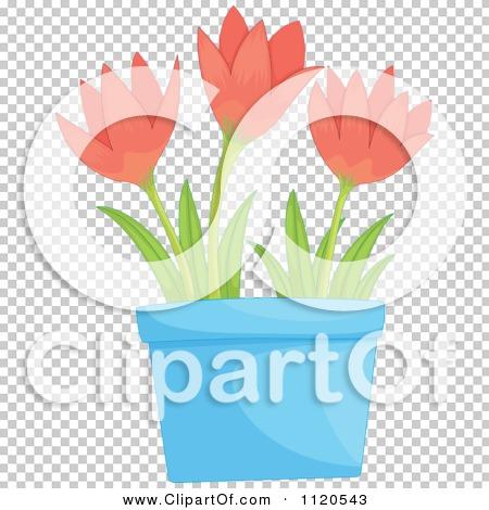 Transparent clip art background preview #COLLC1120543