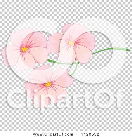 Transparent clip art background preview #COLLC1120552