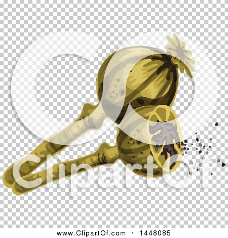 Transparent clip art background preview #COLLC1448085