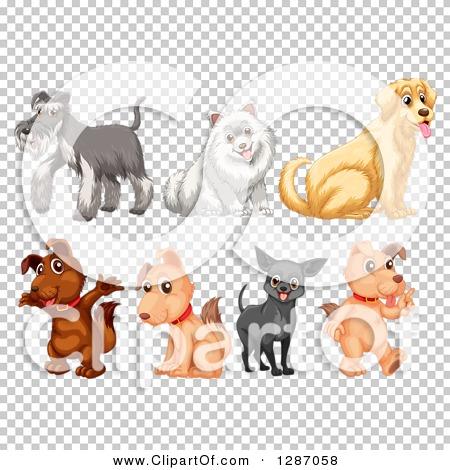 Transparent clip art background preview #COLLC1287058