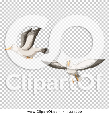 Transparent clip art background preview #COLLC1334200