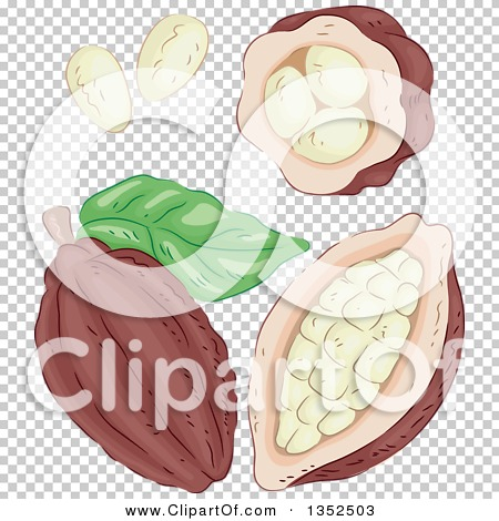 Transparent clip art background preview #COLLC1352503