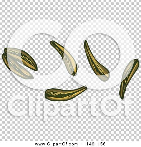 Transparent clip art background preview #COLLC1461156