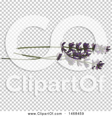 Transparent clip art background preview #COLLC1468459