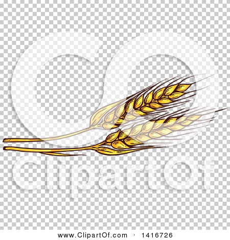 Transparent clip art background preview #COLLC1416726