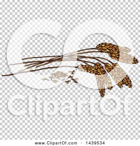 Transparent clip art background preview #COLLC1439534