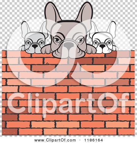Transparent clip art background preview #COLLC1186164