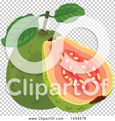 Transparent clip art background preview #COLLC1434678
