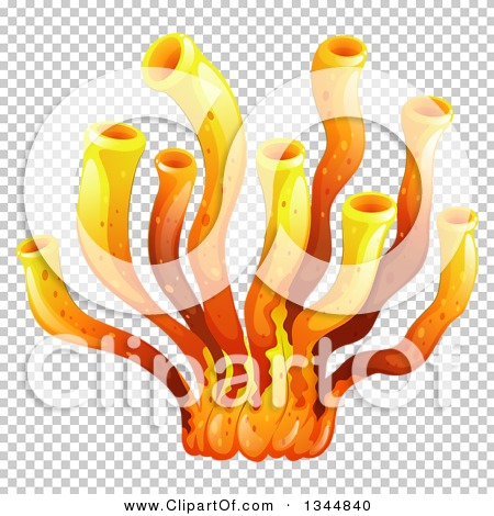 Transparent clip art background preview #COLLC1344840