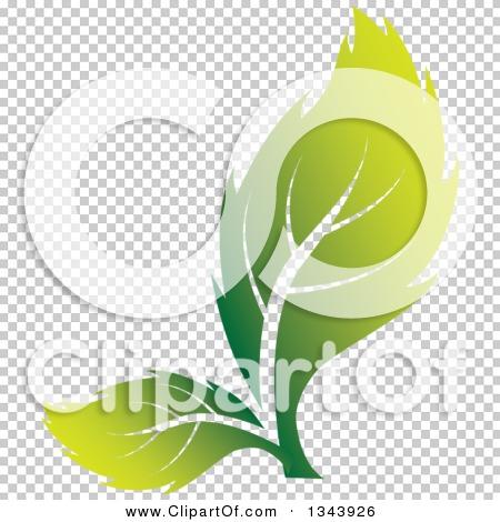 Transparent clip art background preview #COLLC1343926