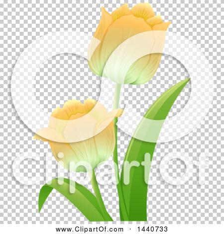 Transparent clip art background preview #COLLC1440733