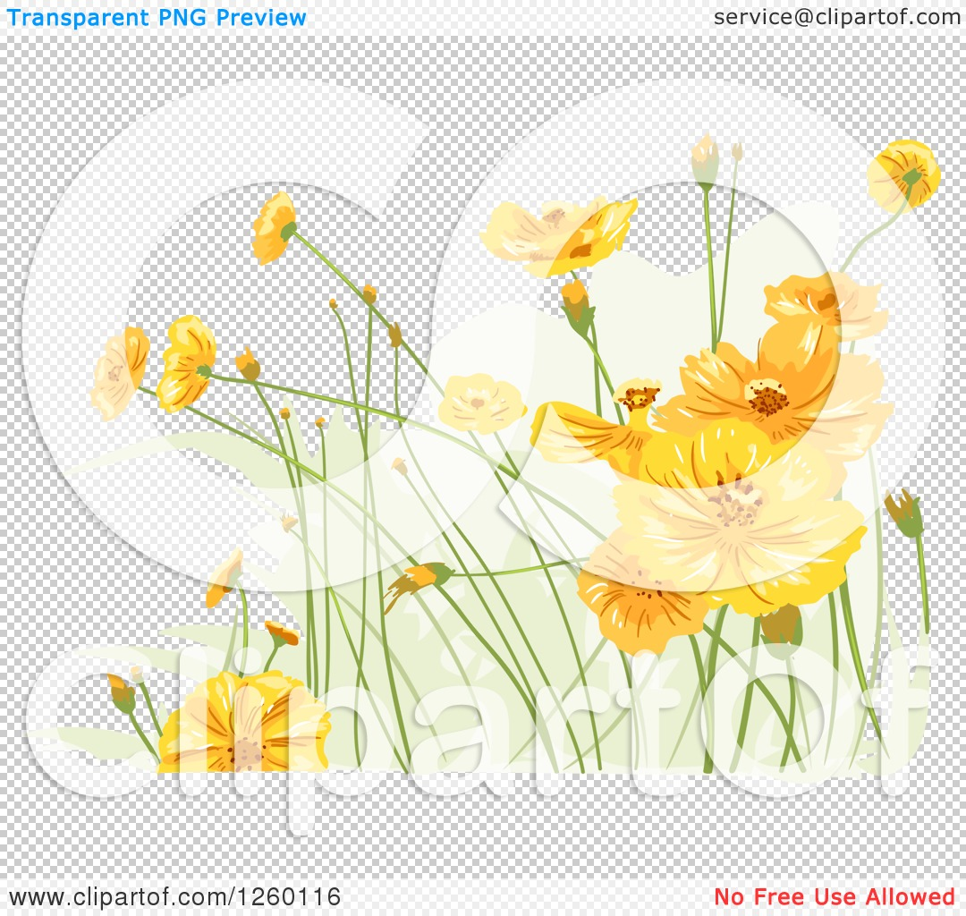 Clipart Of Yellow Wildflowers Royalty Free Vector