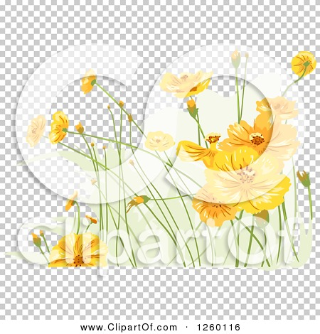 Transparent clip art background preview #COLLC1260116
