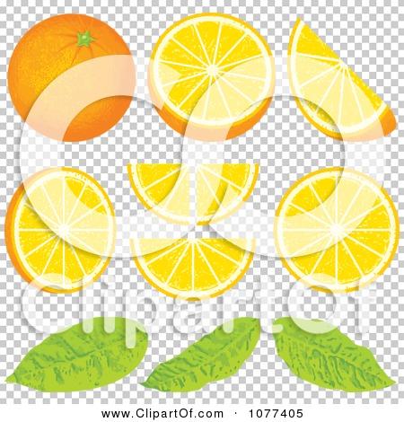 Clipart Orange Wedge Fruit Design Elements - Royalty Free ...