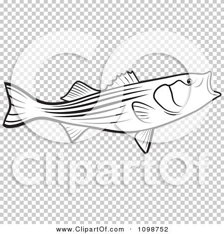 Transparent clip art background preview #COLLC1098752