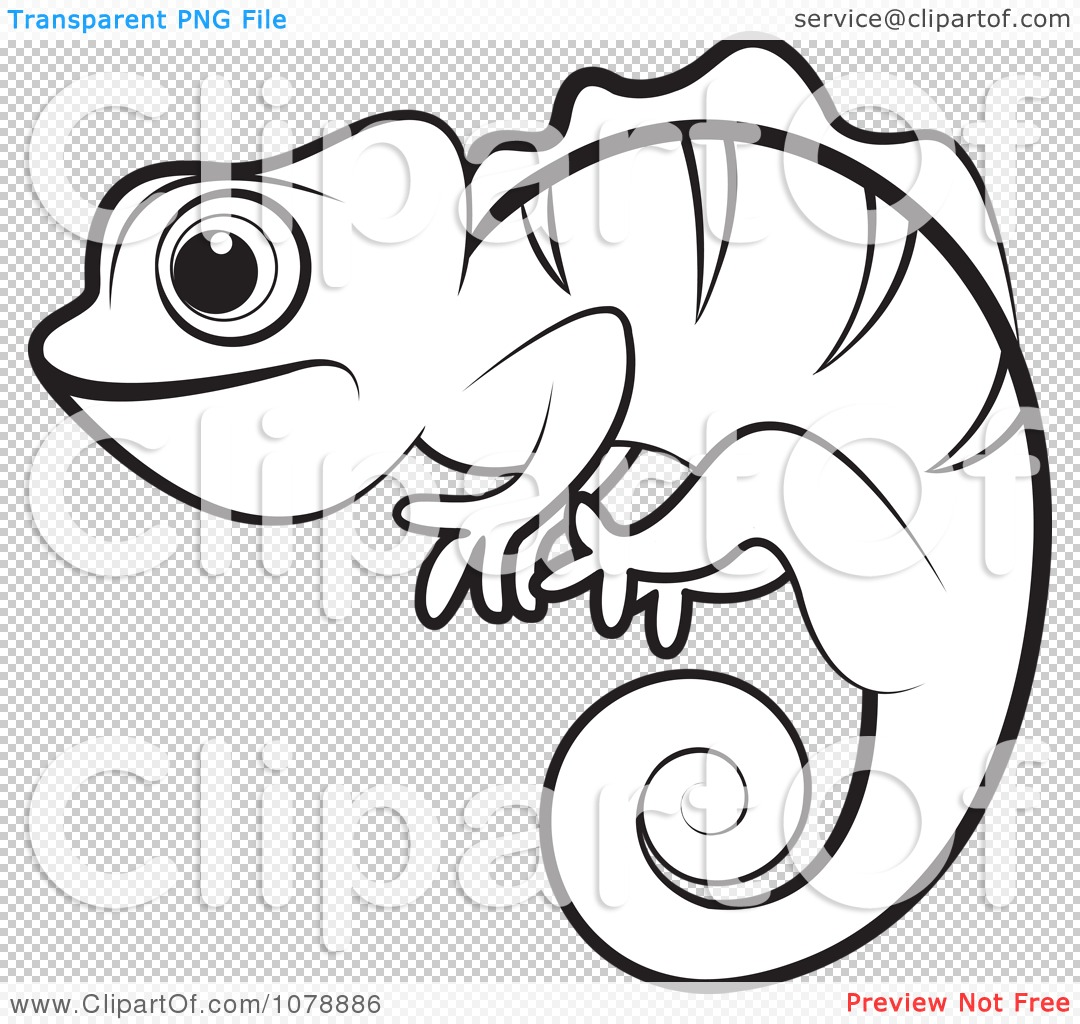 Clipart Outlined Chameleon Lizard Royalty Free Vector