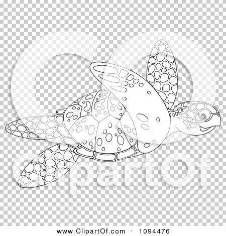 Transparent clip art background preview #COLLC1094476