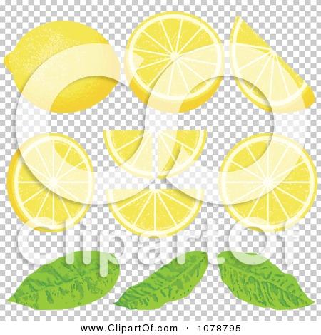 Transparent clip art background preview #COLLC1078795