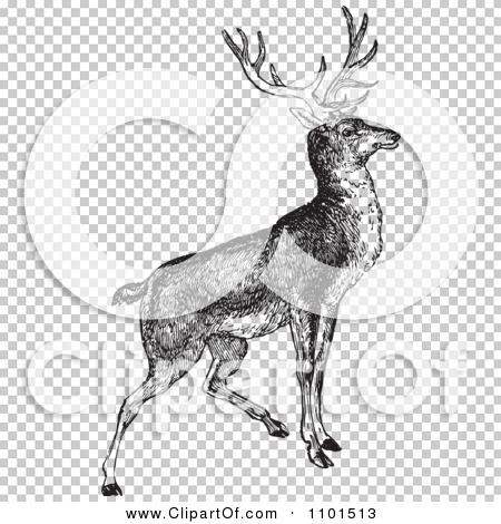Transparent clip art background preview #COLLC1101513