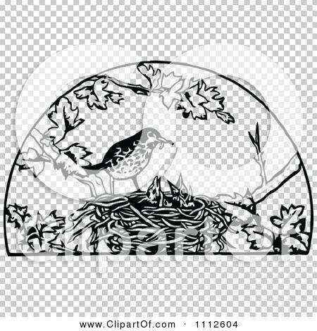 Transparent clip art background preview #COLLC1112604