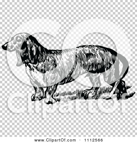Transparent clip art background preview #COLLC1112566