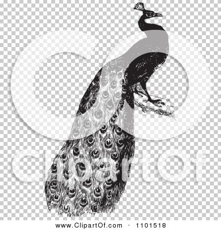 Transparent clip art background preview #COLLC1101518