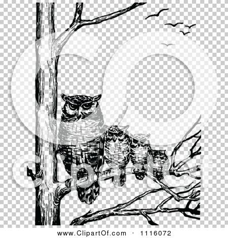 Transparent clip art background preview #COLLC1116072