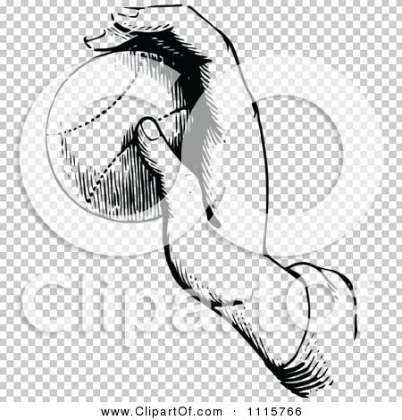 Transparent clip art background preview #COLLC1115766