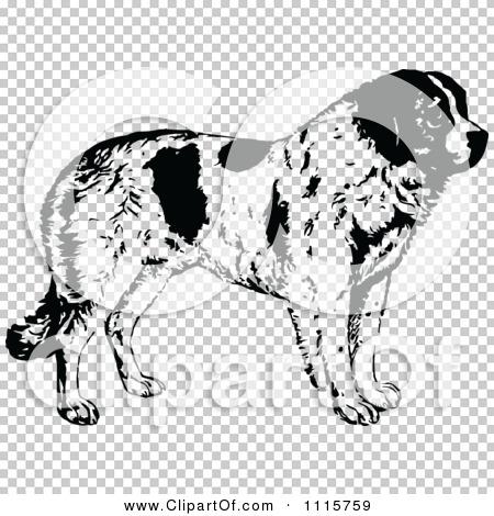 Transparent clip art background preview #COLLC1115759