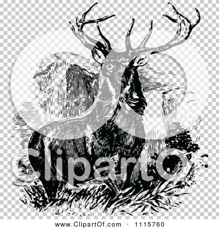 Transparent clip art background preview #COLLC1115760