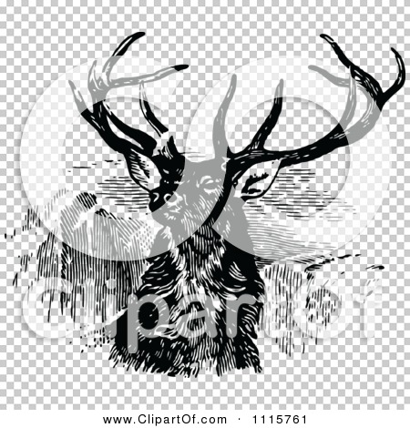 Transparent clip art background preview #COLLC1115761
