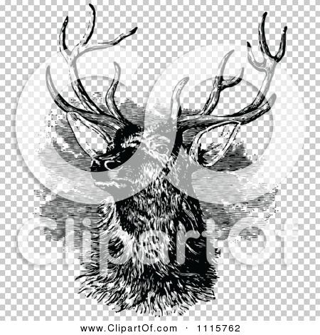 Transparent clip art background preview #COLLC1115762
