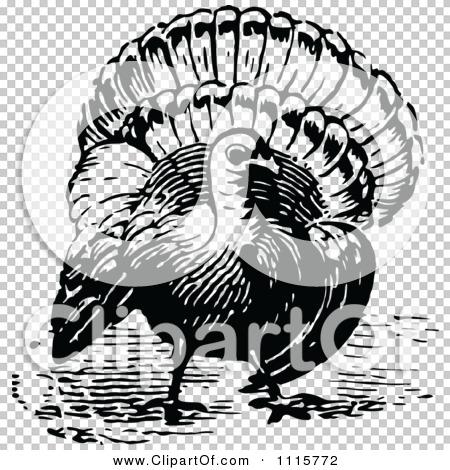 Transparent clip art background preview #COLLC1115772