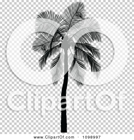 Transparent clip art background preview #COLLC1098997