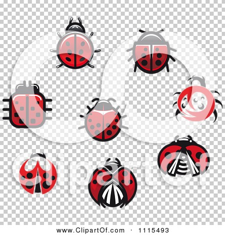 Transparent clip art background preview #COLLC1115493