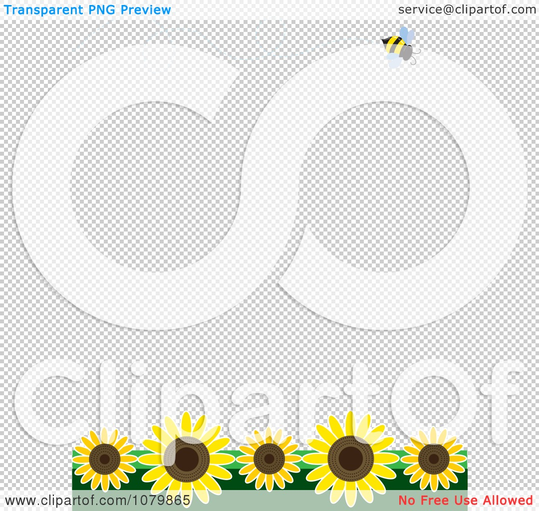 Clipart Summer Border With A Flying Bee And Sunflowers On White ...
