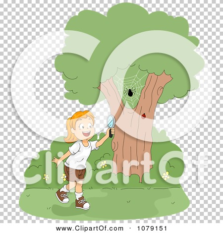Transparent clip art background preview #COLLC1079151