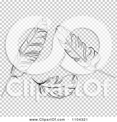 Transparent clip art background preview #COLLC1104321