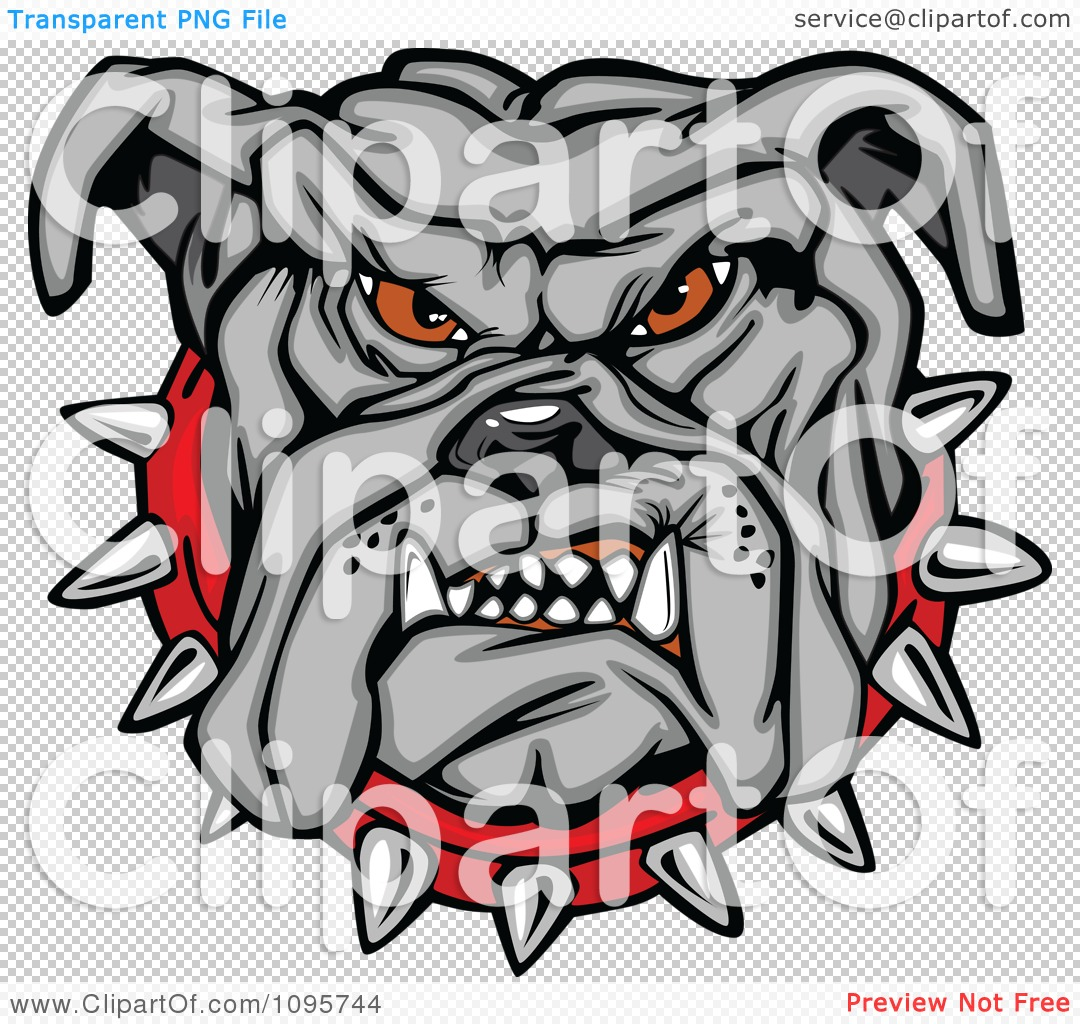 Clipart Tough Gray Bulldog Face With A Red Spiked Collar - Royalty ...