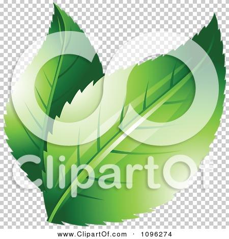 Transparent clip art background preview #COLLC1096274