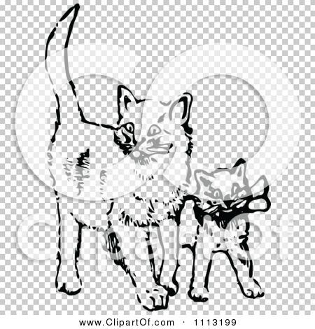 Transparent clip art background preview #COLLC1113199