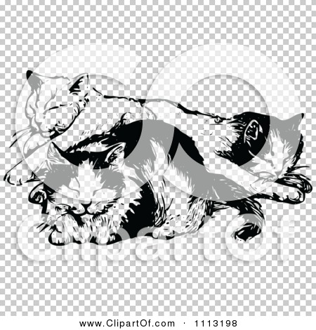 Transparent clip art background preview #COLLC1113198