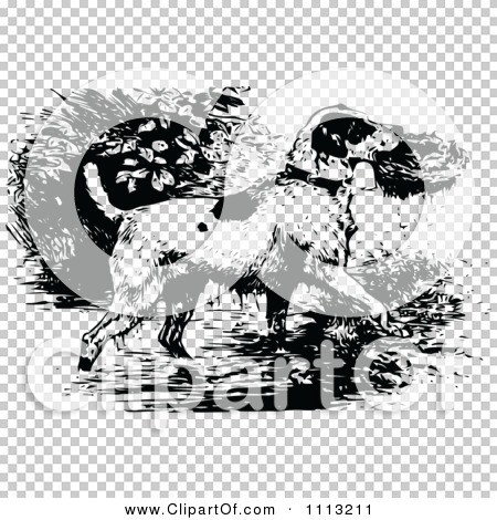 Transparent clip art background preview #COLLC1113211