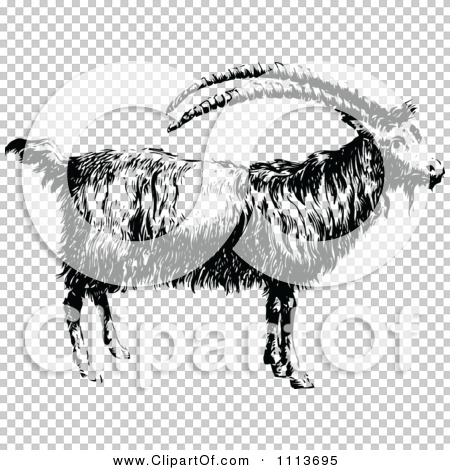 Transparent clip art background preview #COLLC1113695