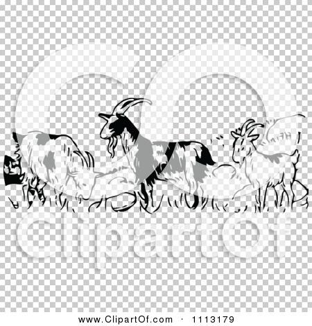 Transparent clip art background preview #COLLC1113179